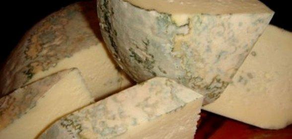 Сыр с плесенью приготовление в домашних условиях
