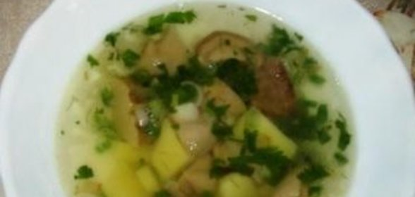 термобелье грибной суп из свежих грибов рецепт с фото этих тканей прекрасно